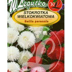 Polish Daisy Seeds - Stokrotka Wielokwiatowa-0