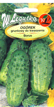 Polish Cucumber Seeds - Ogorek - Borus-0
