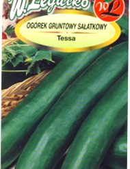 Polish Cucumber Seeds - Ogorek - Tessa-0
