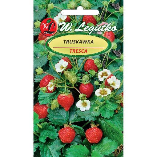 Polish Strawberry Seeds - Truskawka - Tresca-0