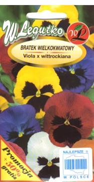 Polish Pansy Seeds - Bratek - Wielokwiatowy-0