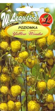 Polish Wild Strawberry Seeds - Poziomka - Yellow Wonder-0