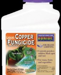 Copper Fungicide Concentrate by BONIDE - 16 oz-0
