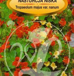 Polish Nasturtium Dwarf Mixed Seeds - Nasturcja - Niska-0