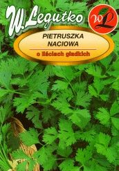 Polish Parsley Seeds - Pietruszka Naciowa - Gigante Italia-0