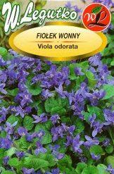 Polish Sweet Violet Seeds - Fiolek Wonny-0