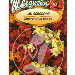 Polish Wallflower Seeds - Lak Ogrodowy-0