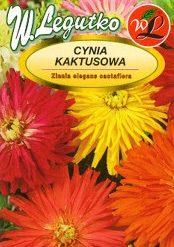 Polish Zinnia Mixed Glamour Girls Seeds - Cynia - Kaktusowa-0