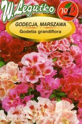 Polish Godetia Mixed Seeds - Godecja - Azalia Letnia-0