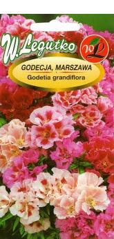Polish Godetia Mixed Seeds - Godecja - Azalia Letnia-0