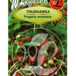 Polish Strawberry Seeds - Truskawka - Temptation-0