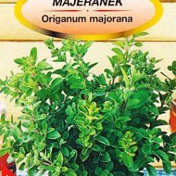 Polish Sweet Marjoram Seeds - Majeranek-0