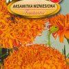Polish African Marigold Fantastic Seeds - Aksamitka Wzniesiona-0