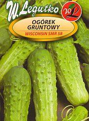 Polish Cucumber Seeds - Ogorek - Wisconsin-0