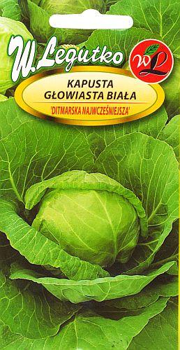 Polish Cabbage Seeds - Kapusta - Głowiasta Biała-0