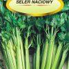 Polish Celery Seeds - Seler - Naciowy-0