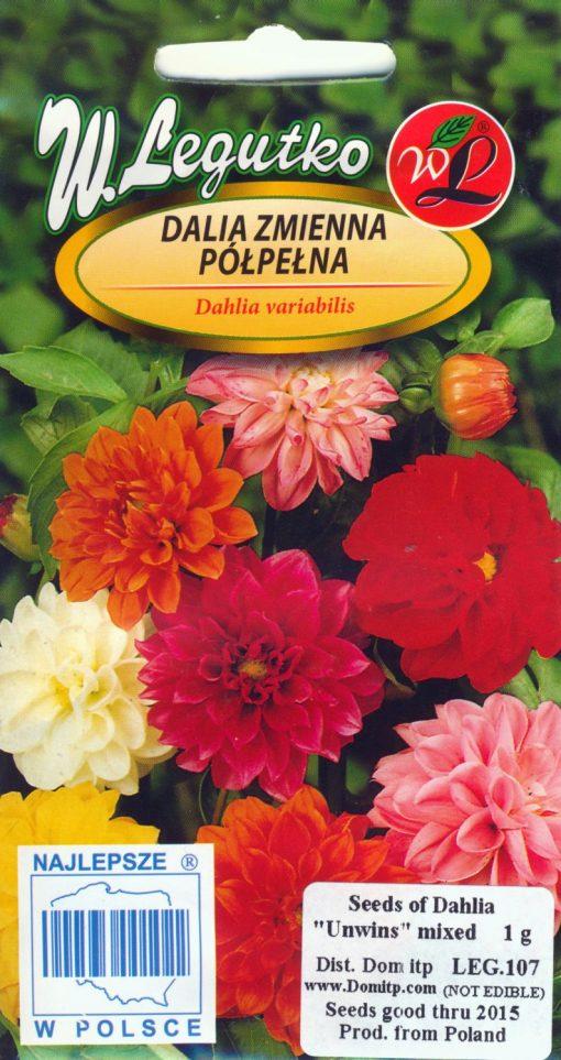 Polish Mixed Dahlia Seeds - Dalia Zmienna Polpelna-0