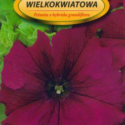Polish Petunia Cherry Seeds - Petunia Wielokwiatowa-0
