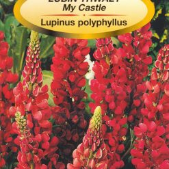 Polish Russel Lupine Seeds - Lubin Trwaly - My Castle-0