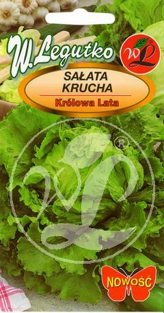 Polish Lettuce Seeds - Salata - Summer Queen-0