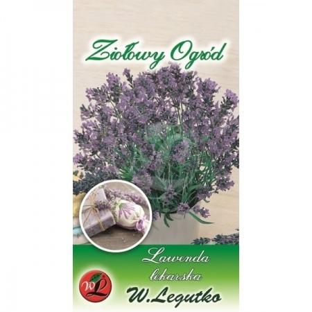 Polish Lavender Seeds - Lavenda - Lekarska -0