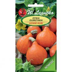 Polish Pumpkin Seeds - Dynia Olbrzymia - Uchiki Kuri-0